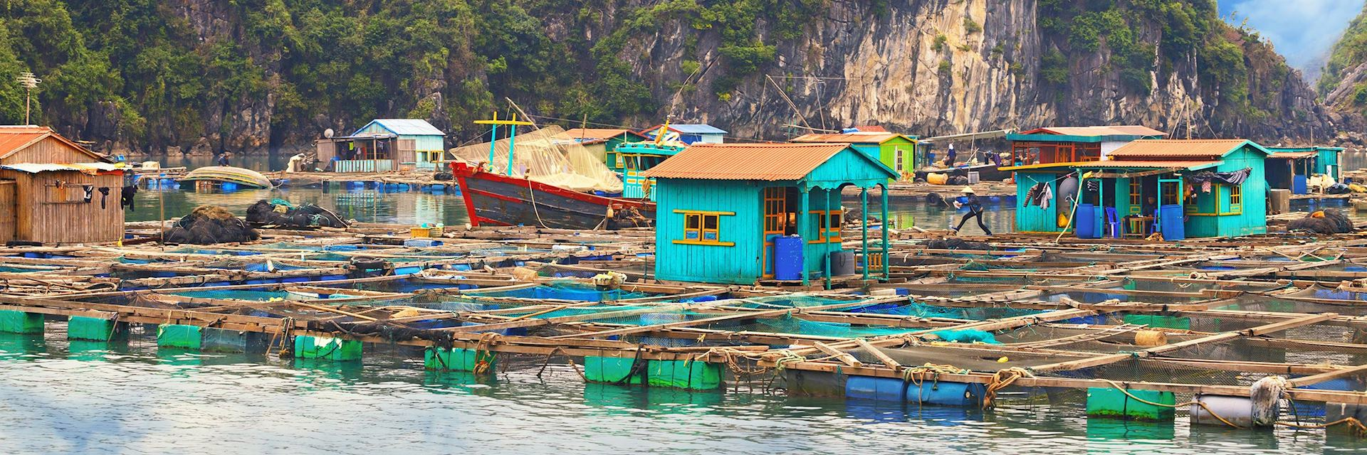 Floating village, Halong Bay