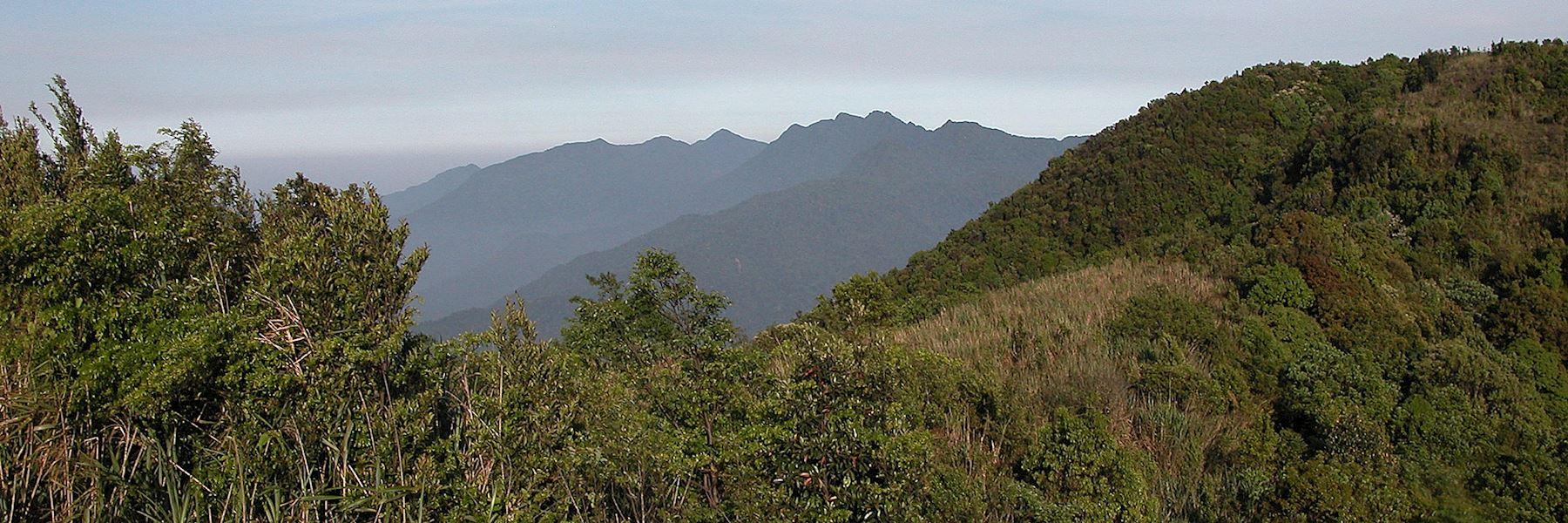 Visit Bach Ma National Park, Vietnam
