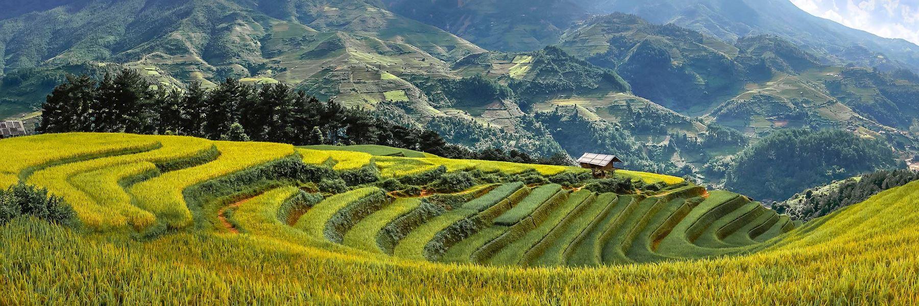 Visit Mu Cang Chai, Vietnam