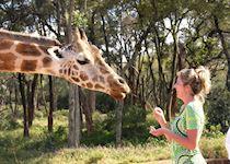 Arista at Giraffe Manor in Kenya