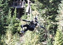 Molly ziplining in Whistler, British Columbia