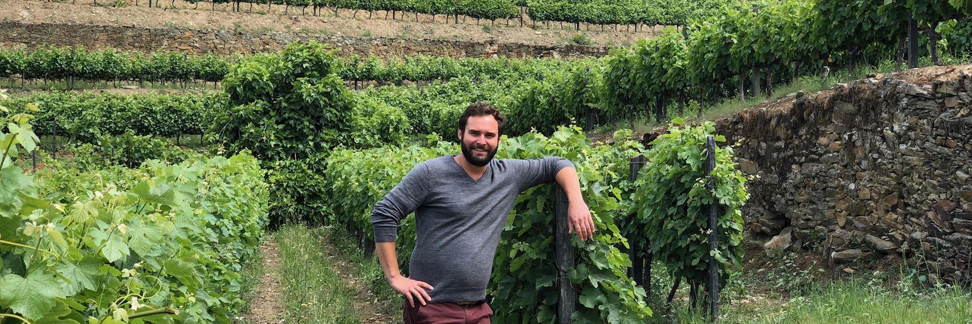 Geoff in the vineyards at Quinta de Bomfim, Portugal