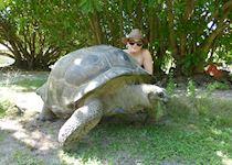 Natalie with a giant tortoise on Bird Island, the Seychelles