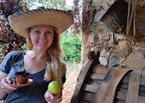 Alison on a coffee farm in Trinidad, Cuba