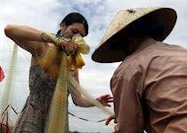 Amanda net fishing in a village in Hoi An, Vietnam