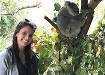 Molly visiting with koala in Australia