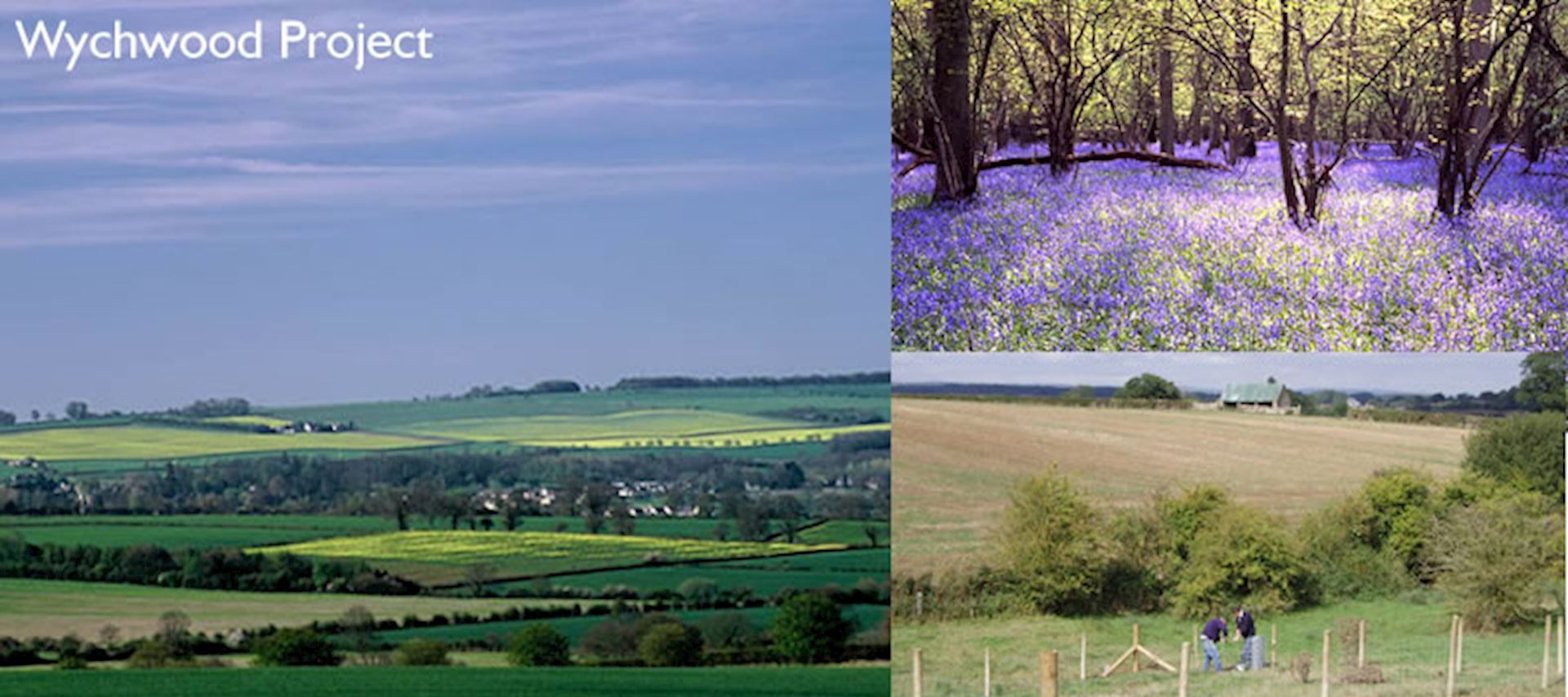 The Wychwood Project aims to enhance the environmental, cultural and historical features of Oxfordshire's landscape