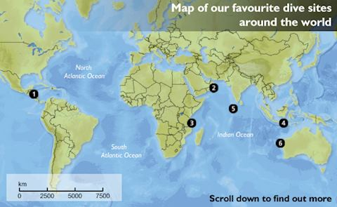 Our Favourite Scuba Dive Sites Around The World Audley Travel - Oceans around the world