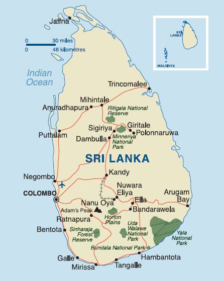 Sri Lankan Wildlife  Audley Travel